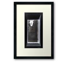 Shadowbox Framed Print