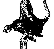 Ostrich Rider by Ieuan  Edwards
