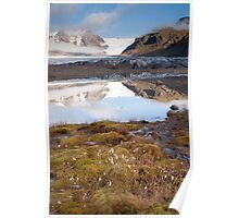 Svinafellsjokul glacier & lake / Bog Cotton Poster