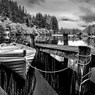 Loch Ard, The Trossachs,Scotland by Jim Wilson