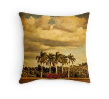 Fiddler's Creek Entrance Throw Pillow