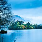Grasmere by wildscape