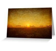 Fiddler's Creek Sandpiper Sunrise Greeting Card