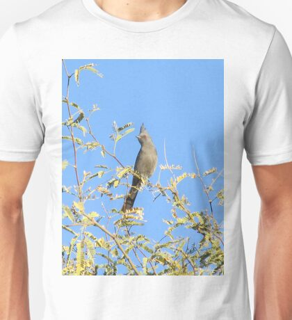 Female Phainopepla Eyeing the Morning from Her Tree Unisex T-Shirt