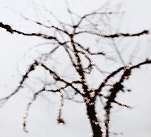 tree of love by beverlylefevre