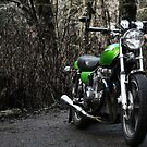 1976 Kawasaki kz 900 ltd by Brandon Taylor