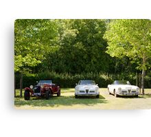 Alfa Romeo 6C & Giulia Spiders Canvas Print