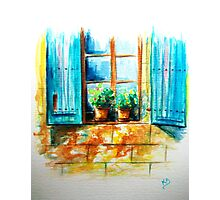 The two flowerpots.....:) Photographic Print