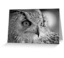 Bengal Owl black and White Greeting Card