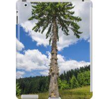 Secular fir tree on mountains iPad Case/Skin