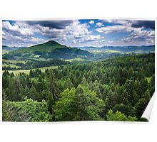 Mountains covered in pine trees Poster