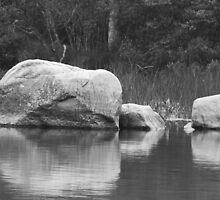 Echo Lake Reflection B&W by mcstory
