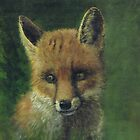 Fox in a wood by Phil Willetts