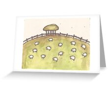 Sheeps Greeting Card