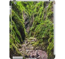 A beautiful view of a narrow wild canyon iPad Case/Skin