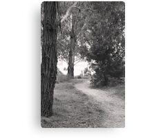 A Path To Nowhere Canvas Print