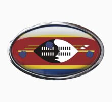 Swaziland Flag in Glass Oval by Ovals
