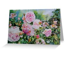 Pink Roses with Honeyeater  Greeting Card