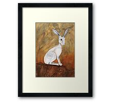 White Hare at Sunset Framed Print