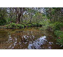 Somersby River Reflections Photographic Print