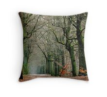 Looking for the last leaves in the January forest Throw Pillow