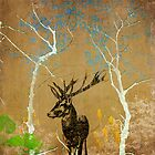 Deer in the forest by Pascal Deckarm
