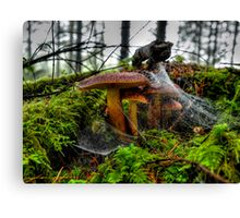 Just Try To Stop Me ~ Wild Mushrooms ~ Canvas Print