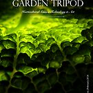 garden tripod 19 by CountryGardens