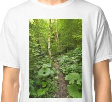Marked trail through the forest Classic T-Shirt