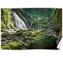 Waterfall in a jungle Poster