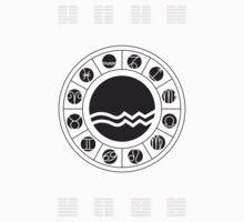 Aquarius Zodiac Wheel with I Ching Hexagrams by Chris Hopkins