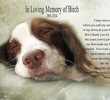 In Memory of Birch for Angie and Sandy by vigor