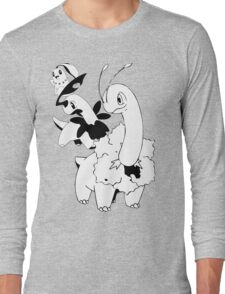 Chikorita Evolution Line Long Sleeve T-Shirt