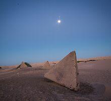 Alien by Bruce Reardon