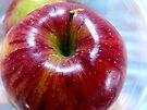 Apple Halo by Susan S. Kline