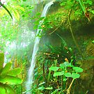 Tropical Waterfall by echoesofheaven