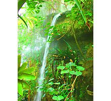 Tropical Waterfall Photographic Print