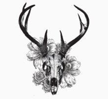 Deer Skull by Hansencarly