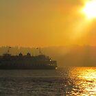 Sunset Ferry by Michelle Brandt