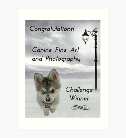 Challenge Winner Banner Canine Fine Art and Photography Art Print
