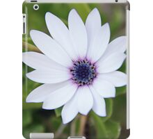White flower blue heart iPad Case/Skin