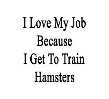 I Love My Job Because I Get To Train Hamsters  Photographic Print