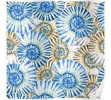 Watercolor abstract pattern, shell, blue pattern Poster