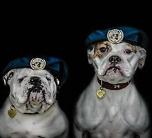 War Dogs (Peacekeepers) by ARIANA1985