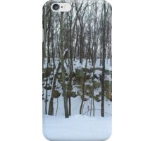 Winter Wonderland is Calling iPhone Case/Skin