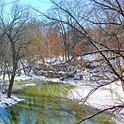 SILVER CREEK IN JANUARY by Pauline Evans