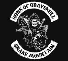 Sons Of Grayskull V2.0 by PureOfArt
