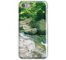 A Creek in Maine iPhone Case/Skin