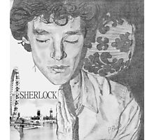 Sherlock's Rest Photographic Print
