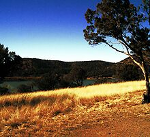 Parker Canyon Lake by ptosis
